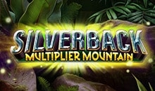 Silverback Multiplier Mountain